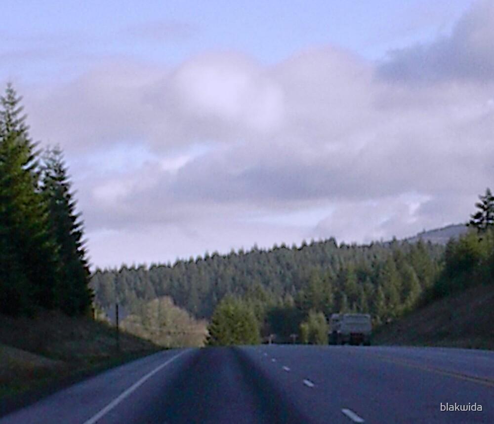 the long road home... by blakwida