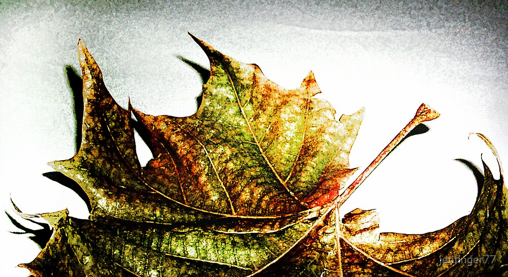 Autumn by jenfinger77