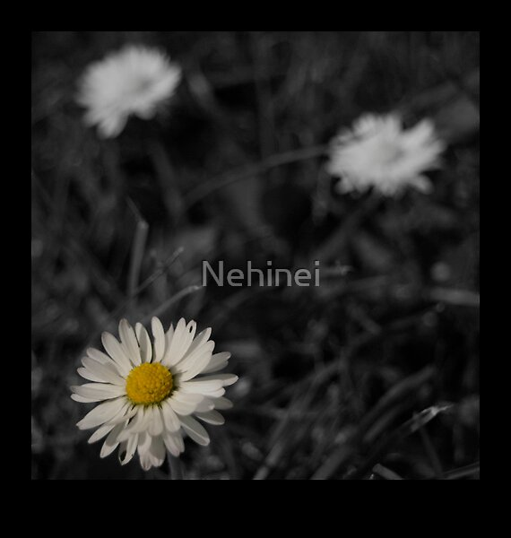 Untitled by Nehinei