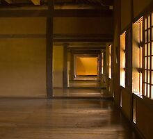 Kumamoto Castle I by Elvis Diéguez