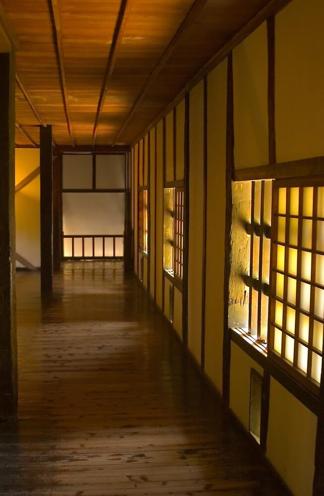 Kumamoto Castle II by shadow2
