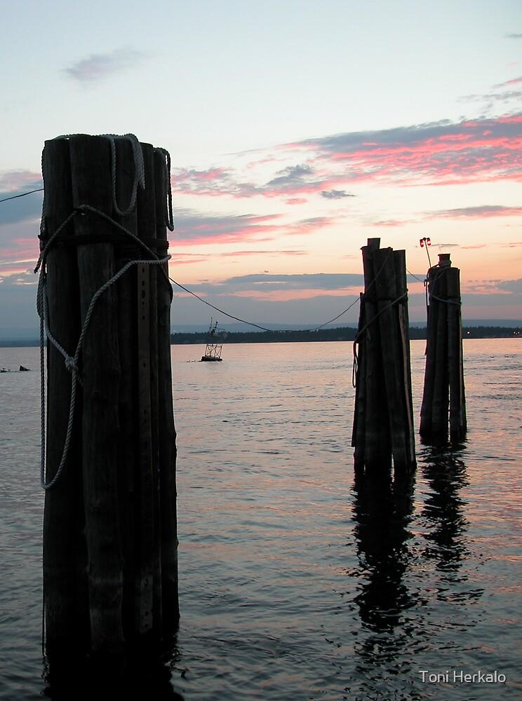 Dusk on Lake Champlain by Toni Herkalo