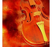 Red violin Photographic Print