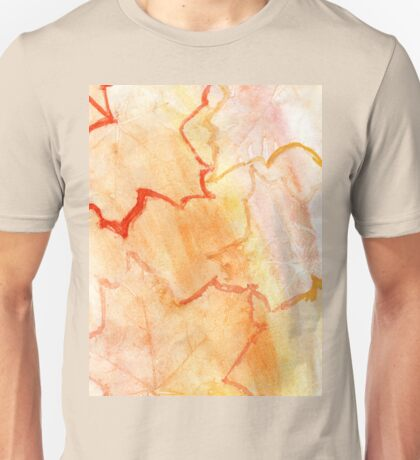 Orange Paint Background 8 Unisex T-Shirt
