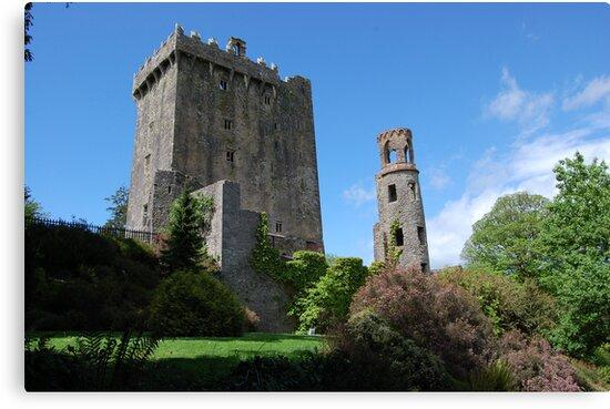 Blarney Castle by mik013