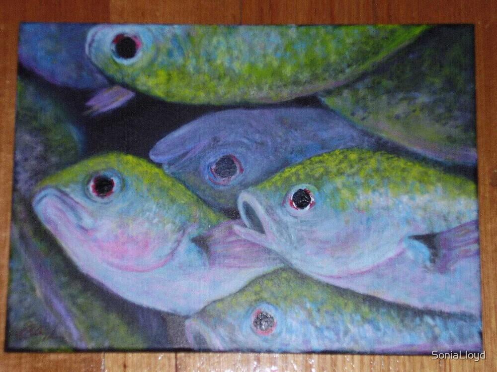 Dead Fish by SoniaLloyd