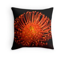 Fireworks by Nature... Throw Pillow