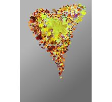 autumn heart Photographic Print
