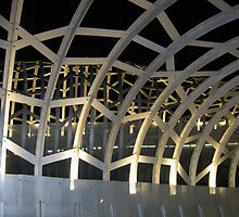 The Steel Web by garyt581