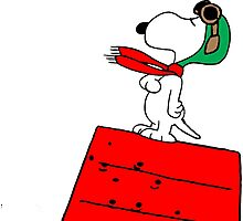 Snoopy Red Baron Photographic Print