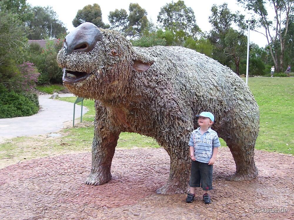 woah, that's a big wombat! by jackiewintle
