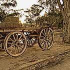 Wagon Wheels by sparrowhawk