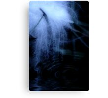 Moonlit Floating Feather Canvas Print