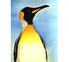Penguin 2 Photographic Print