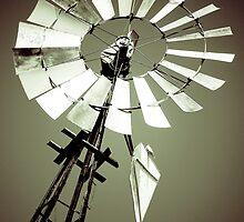 Tilting at Windmills by Colin Tobin