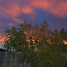 Bay Area Skies - Red In The Morning by davesdigis