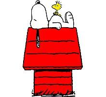 Snoopy & Woodstock Photographic Print