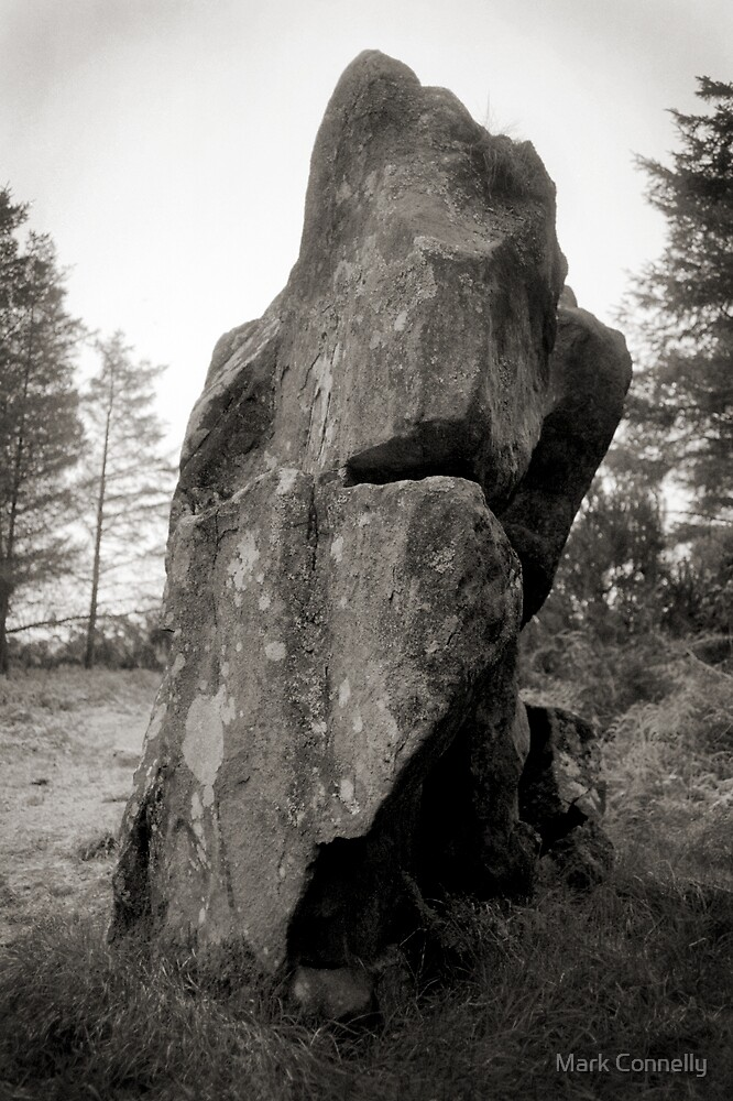 Blackpark Standing Stone by Mark Connelly
