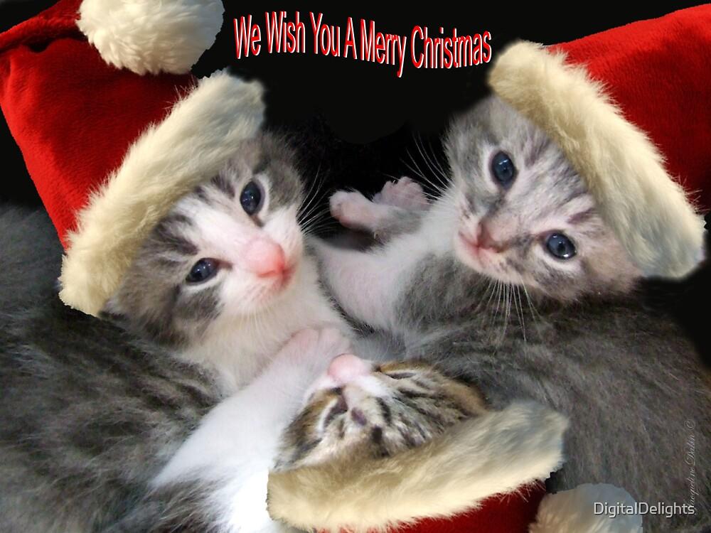 Christmas Kittens by DigitalDelights