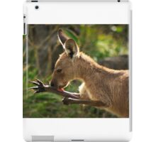 Preening Wallaby iPad Case/Skin
