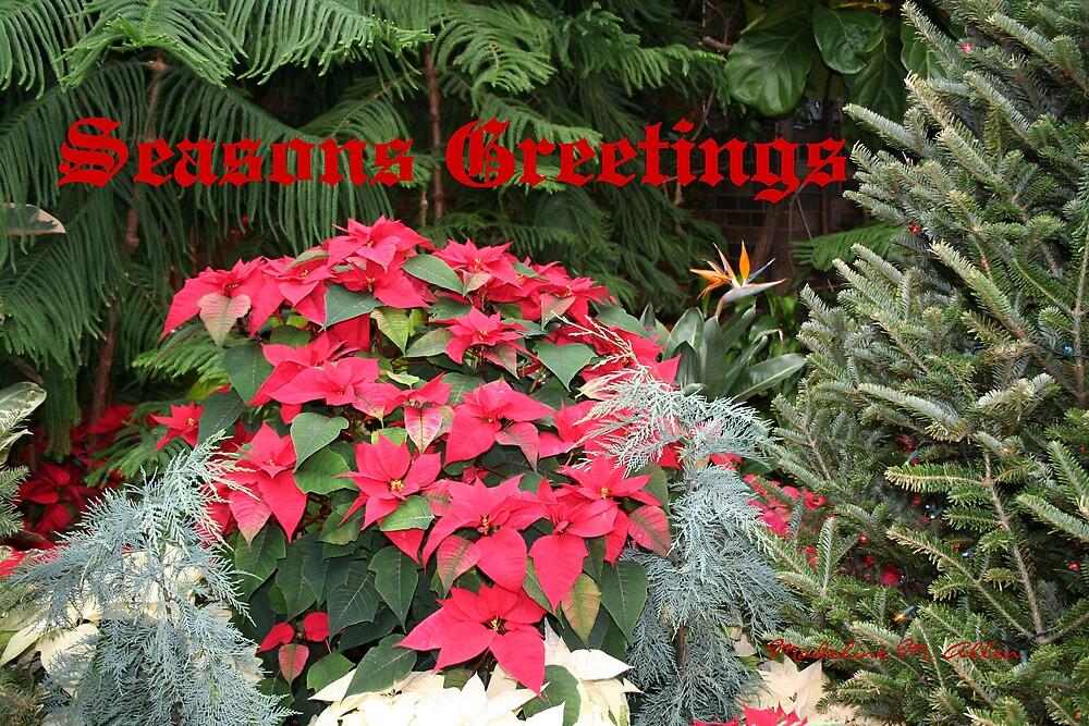 Seasons Greetings by Madeline M  Allen