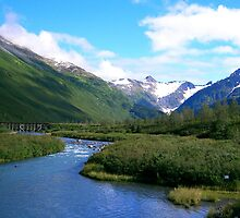 Bear Valley AK by SandiDenman