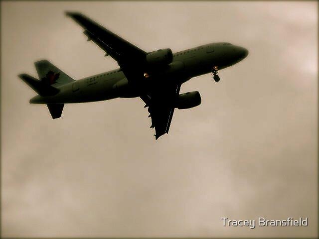 Toronto Sky by Tracey Bransfield