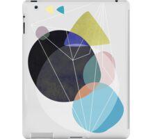 Graphic 173 iPad Case/Skin