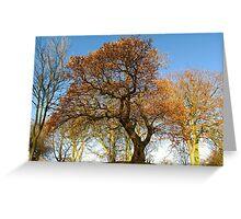 COLOURED TREE Greeting Card