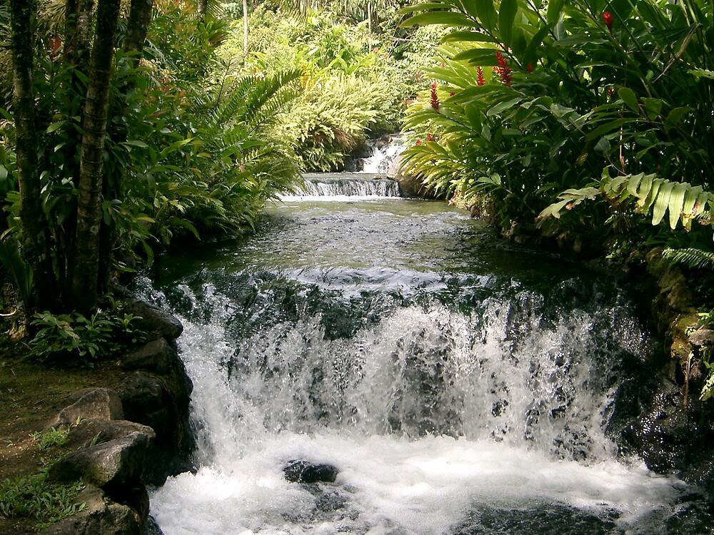 Flow by Aqua8