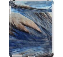 Frosty Wings iPad Case/Skin