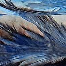 Frosty Wings by Creative Captures