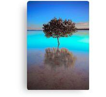 Aquamarine Morning - Victoria Point Qld Australia Canvas Print