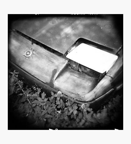 Dead Z Photographic Print