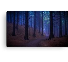 Macclesfield Forest Canvas Print