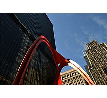 Chicago Flamingo Photographic Print