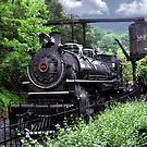 Dollywood Express Baldwin Steamer Train ..PILLOWS AND OR TOTE BAGS..PICTURES,,ECT by ✿✿ Bonita ✿✿ ђєℓℓσ