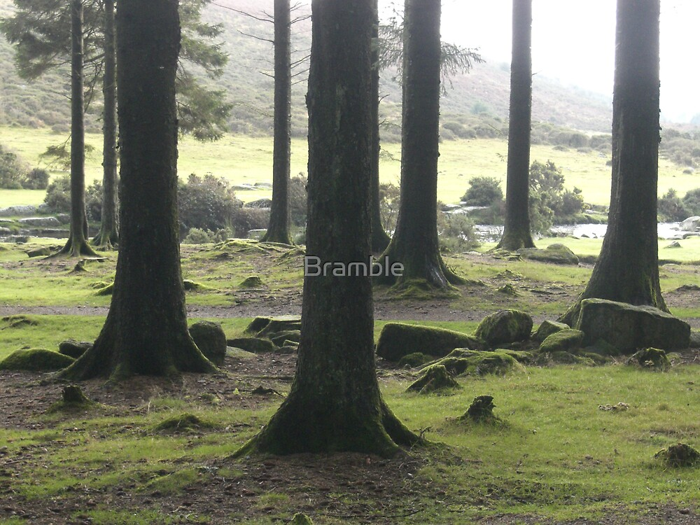 Enjoy the silence by Bramble