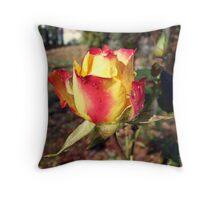 dual colored beauty Throw Pillow