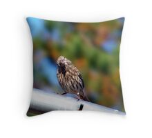whatcha lookin at??? Throw Pillow