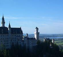 Swan castle by Sonyalau