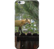 Wet Fox iPhone Case/Skin