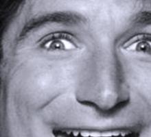 Robin Williams Sticker