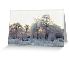 The first morning after the first snow... Greeting Card