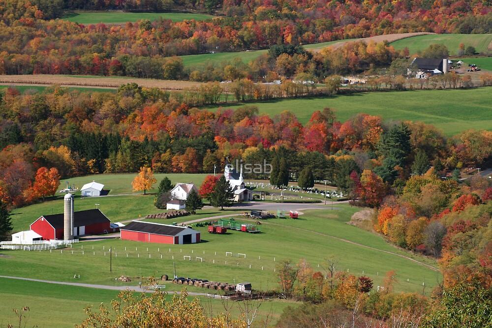 Farm Land by elisab
