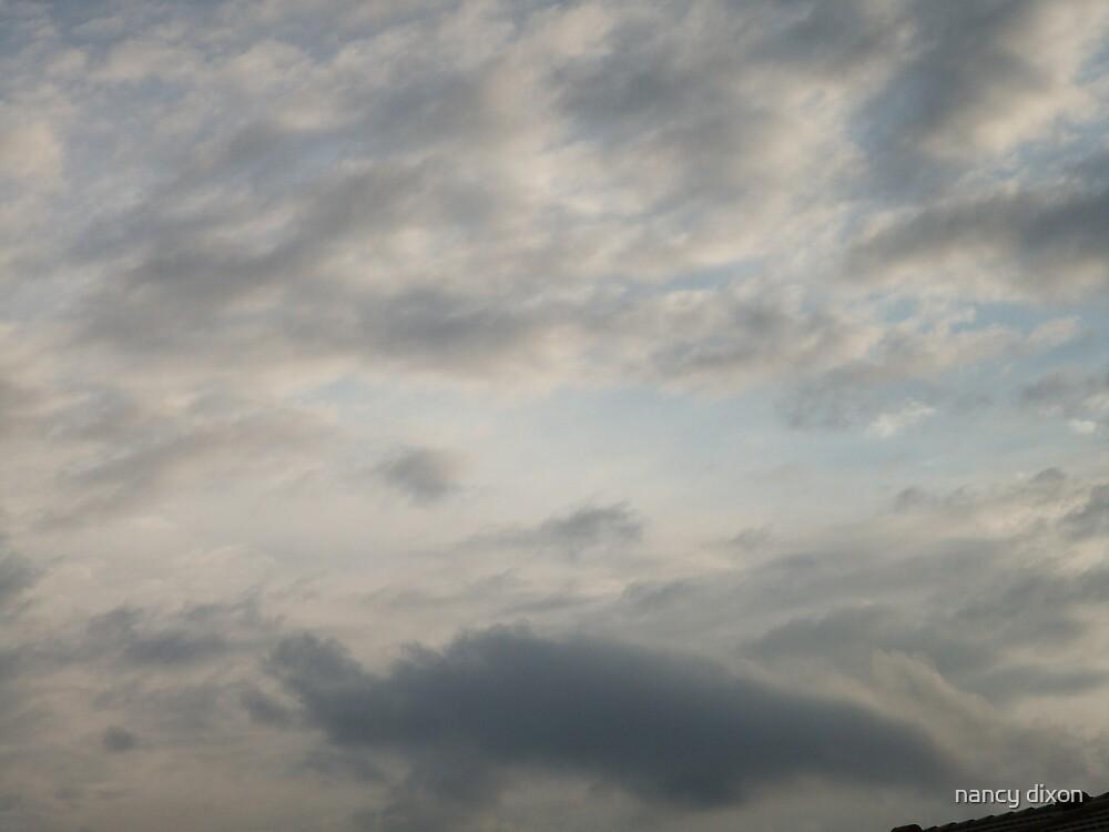 sky high by nancy dixon