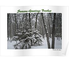 Seasons Greetings Brother Poster