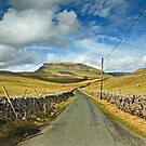 Penyghent, Yorkshire Dales by Stephen Liptrot