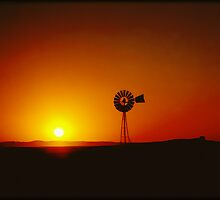 Outback Windmill by Katie Cann