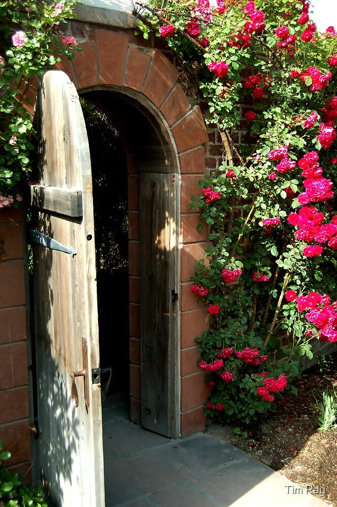 The Secret Garden by Tim Ray